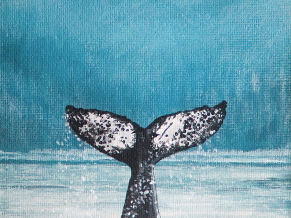 """Humpback """"Divider"""" Tail Wave in Whale Channel"""